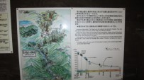 http://www.comfortablelife.asia/images/2011/04/Ttrekking-to-Jomon-Sugi_04-203x113.jpg