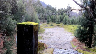 http://www.comfortablelife.asia/images/2011/04/Ttrekking-to-Jomon-Sugi_77-330x185.jpg
