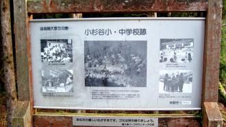 http://www.comfortablelife.asia/images/2011/04/Ttrekking-to-Jomon-Sugi_79-330x185.jpg