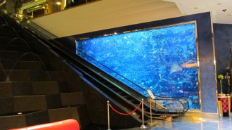 http://www.comfortablelife.asia/images/2011/07/02-Burj-Al-Arab-Lobbya-butler-Desk_002-330x185.jpg