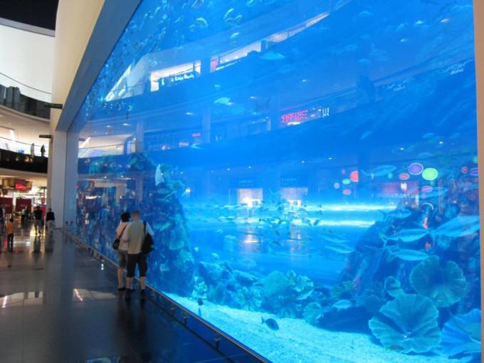 http://www.comfortablelife.asia/images/2011/07/20-DubaiAquarium_017-680x510.jpg