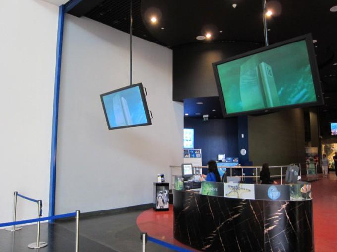 http://www.comfortablelife.asia/images/2011/07/20-DubaiAquarium_049-680x510.jpg