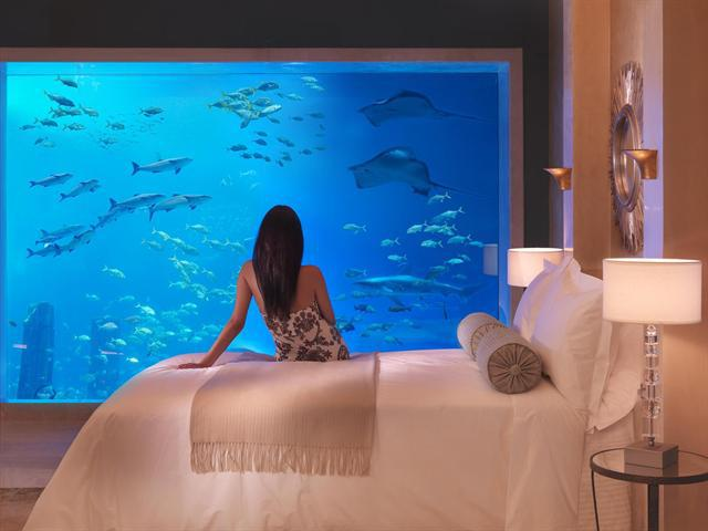 http://www.comfortablelife.asia/images/2012/04/Atlantis-the-Palm_Aquarium-View-Room.jpg
