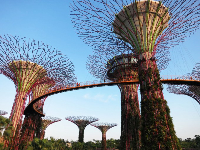 Gardens by the Bay_14