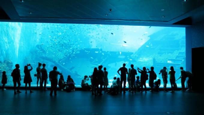 SEA_Aquarium.2014_03