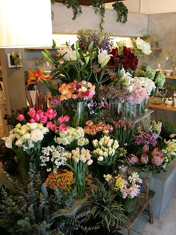 K's flower novo_shop02